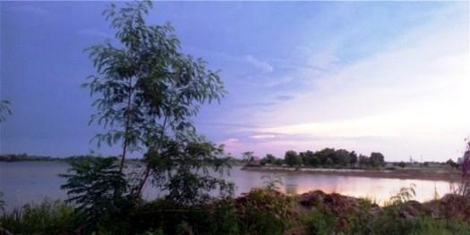 !BUA lake reservoir coconut palms kantarawhichai mahasarakham