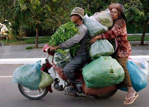 vege-on-bike