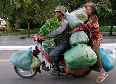 vege-on-bike